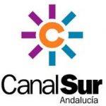 """Canal Sur TV: """"Los informáticos en pie de guerra por la falta de regulación"""""""