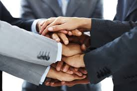 colaboracion profesional informatica