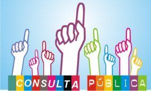 consulta publica