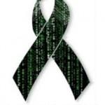 El Gobierno reconoce que la informática es profesión regulada